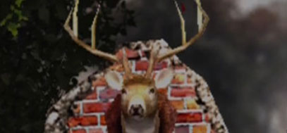 A famous shot of Deadly Premonition's  wall-mounted deer head.