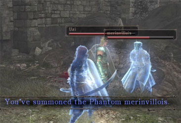 A typical multiplayer screen with two summoned blue phantom.