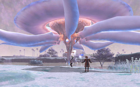 Final Fantasy XI screenshot - A giant jellyfish-like character looms over two players.