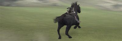 Agro gallops across a beautiful green landscape.