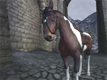 My horse in Oblivion.